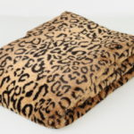 леопард (2)