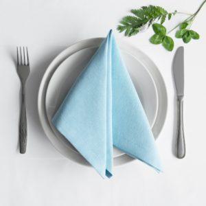 Комплект салфеток Билли 38х38 см Голубой